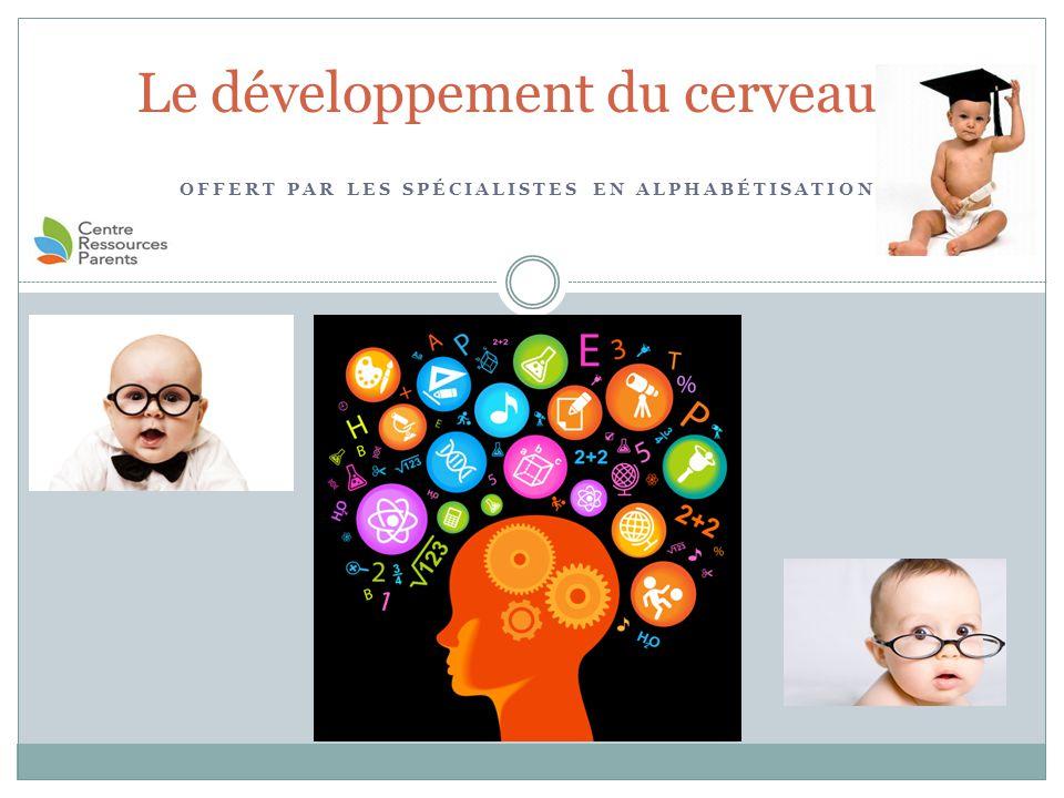 Ressources additionnelles Bébé en santé, cerveau en santé  http://www.bebeensantecerveauensante.ca/index.htm http://www.bebeensantecerveauensante.ca/index.htm Naître et Grandir  http://naitreetgrandir.com/fr/ http://naitreetgrandir.com/fr/ TedTalk (Anglais)  http://www.youtube.com/watch?v=BoT7qH_uVNo#t=35 http://www.youtube.com/watch?v=BoT7qH_uVNo#t=35 Centre de ressources pour parents  http://www.parentresource.ca/ http://www.parentresource.ca/ Les 3 cerveaux et comment les utiliser décrypter votre personnalité http://www.youtube.com/watch?v=xZ-Y_A1fN6o Livres : Le développement global de l'enfant de 0 à 5 ans Carole Bouchard avec la collaboration de Nathalie Fréchette Psychologie du développement humain 7 e édition Diane E.