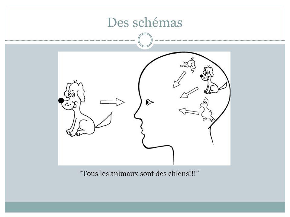 Des schémas Tous les animaux sont des chiens!!!
