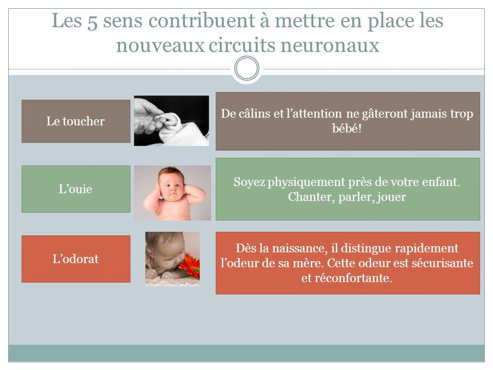 Les 5 sens contribuent à mettre en place les nouveaux circuits neuronaux Le toucher De câlins et l'attention ne gâteront jamais trop bébé.