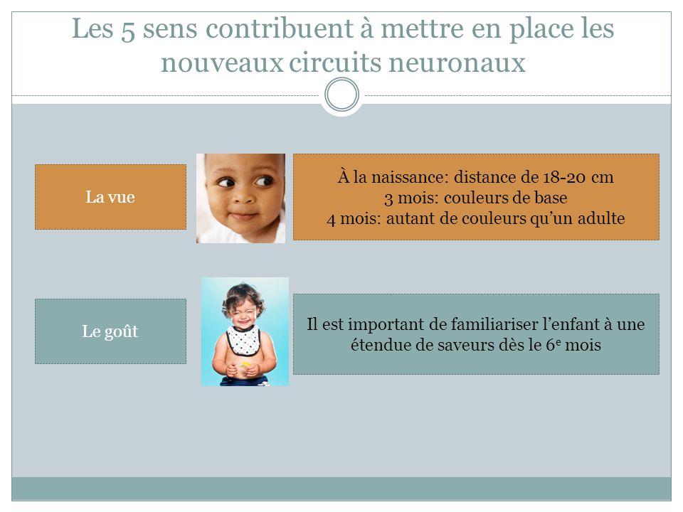 La vue À la naissance: distance de 18-20 cm 3 mois: couleurs de base 4 mois: autant de couleurs qu'un adulte Le goût Il est important de familiariser l'enfant à une étendue de saveurs dès le 6 e mois Les 5 sens contribuent à mettre en place les nouveaux circuits neuronaux