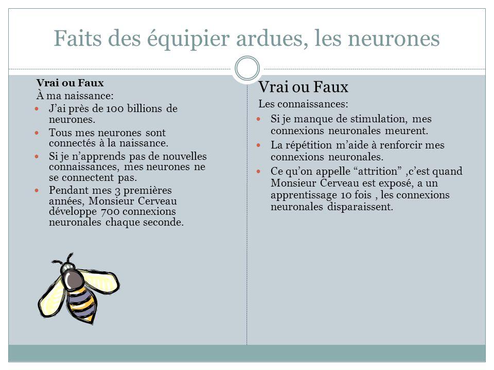 Faits des équipier ardues, les neurones Vrai ou Faux À ma naissance: J'ai près de 100 billions de neurones.