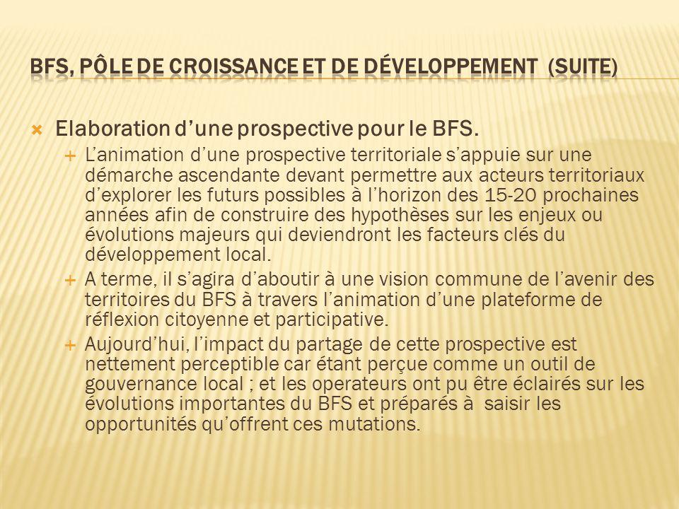  Elaboration d'une prospective pour le BFS.  L'animation d'une prospective territoriale s'appuie sur une démarche ascendante devant permettre aux ac