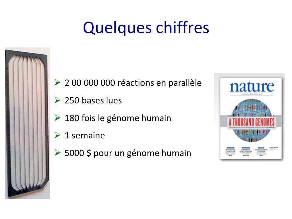 Quelques chiffres  2 00 000 000 réactions en parallèle  250 bases lues  180 fois le génome humain  1 semaine  5000 $ pour un génome humain