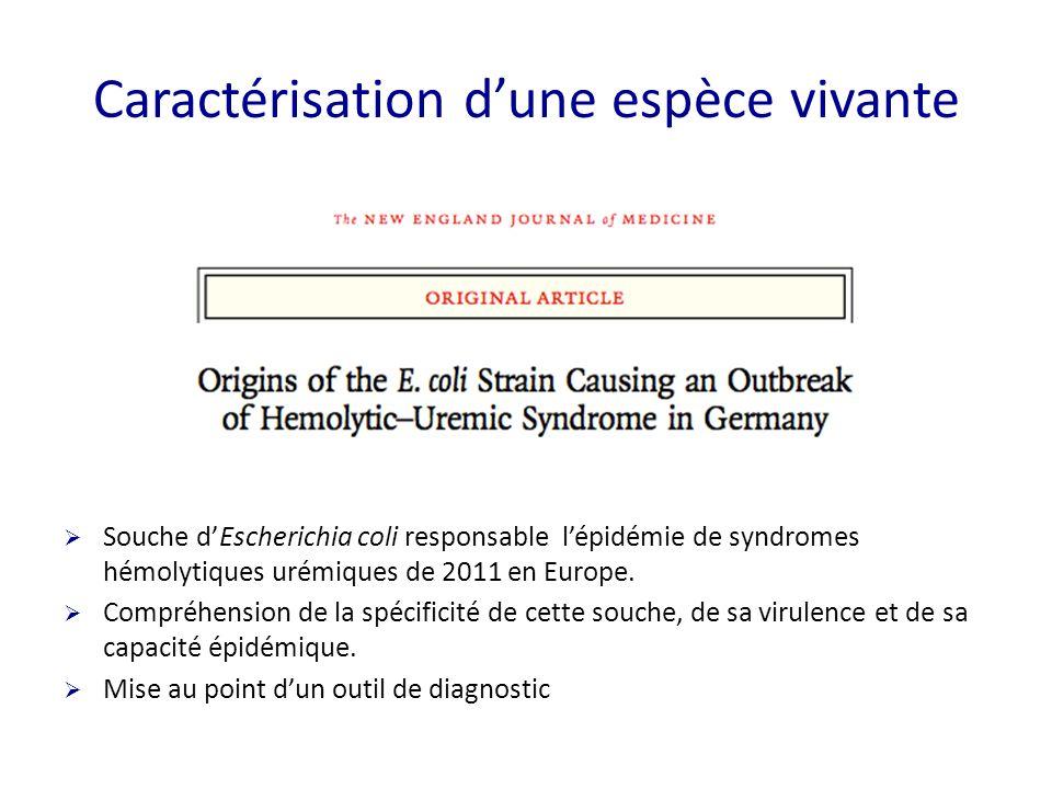  Souche d'Escherichia coli responsable l'épidémie de syndromes hémolytiques urémiques de 2011 en Europe.  Compréhension de la spécificité de cette s