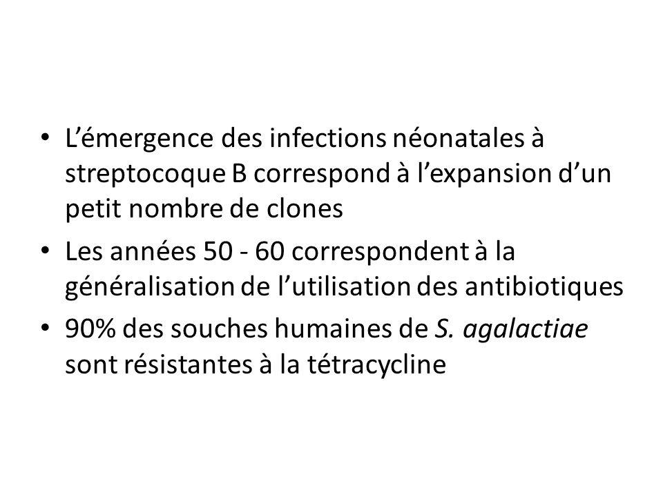 L'émergence des infections néonatales à streptocoque B correspond à l'expansion d'un petit nombre de clones Les années 50 - 60 correspondent à la géné