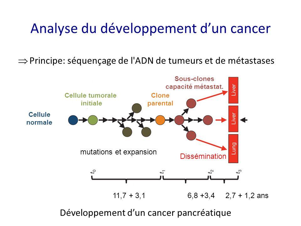 Analyse du développement d'un cancer  Principe: séquençage de l'ADN de tumeurs et de métastases Cellule normale Cellule tumorale initiale Clone paren