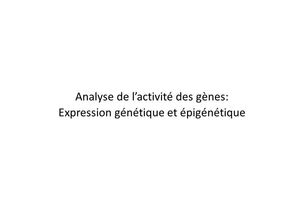 Analyse de l'activité des gènes: Expression génétique et épigénétique