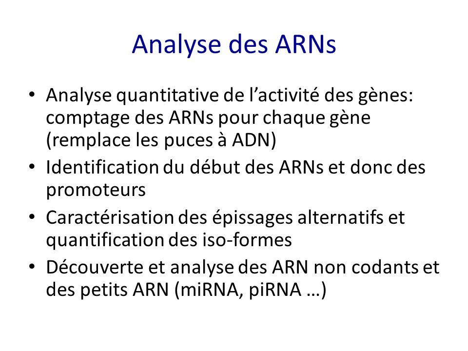 Analyse des ARNs Analyse quantitative de l'activité des gènes: comptage des ARNs pour chaque gène (remplace les puces à ADN) Identification du début d