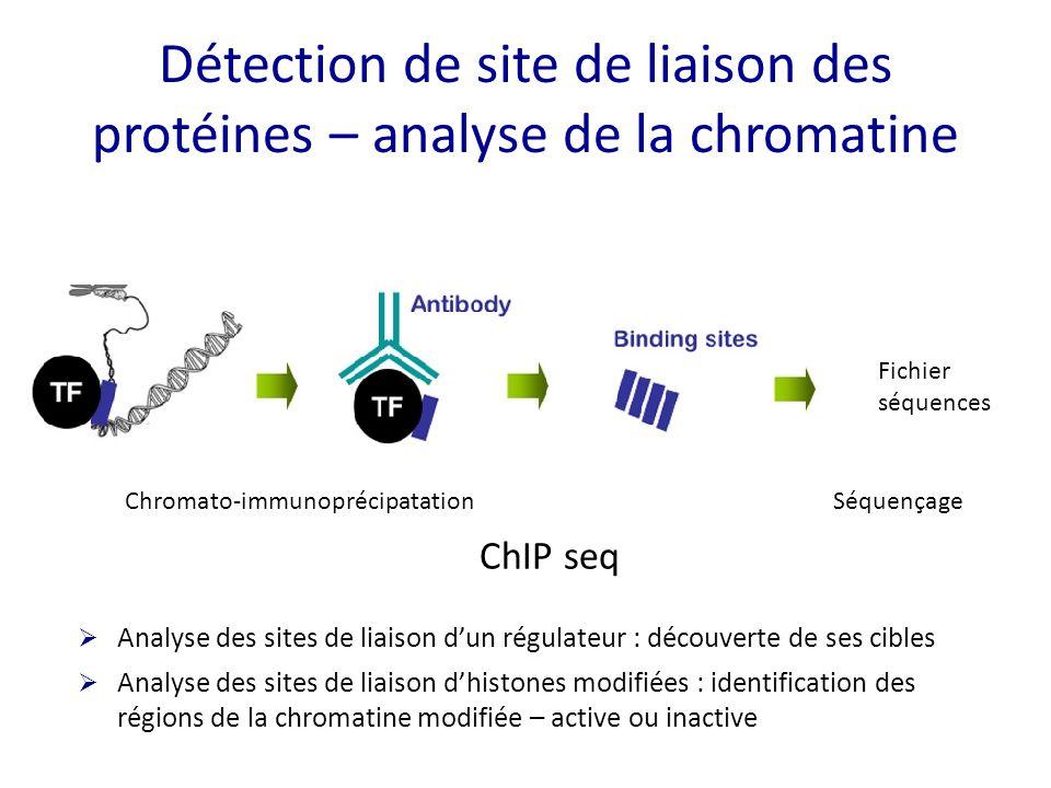 Détection de site de liaison des protéines – analyse de la chromatine Chromato-immunoprécipatation Fichier séquences Séquençage  Analyse des sites de