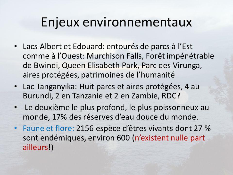 Enjeux environnementaux Lacs Albert et Edouard: entourés de parcs à l'Est comme à l'Ouest: Murchison Falls, Forêt impénétrable de Bwindi, Queen Elisab