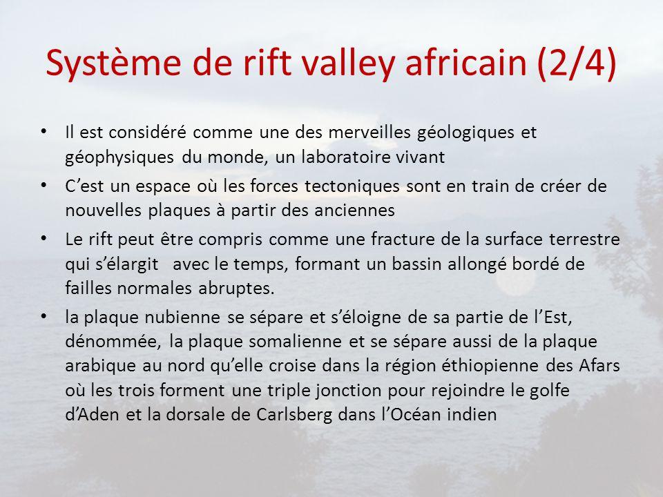Système de rift valley africain (3/4) Partant de ce rift éthiopien, le plus ancien, s'est créé au sud au Kenya, un autre système de rift qui se scinde en deux branches vers 4° de latitude Nord.