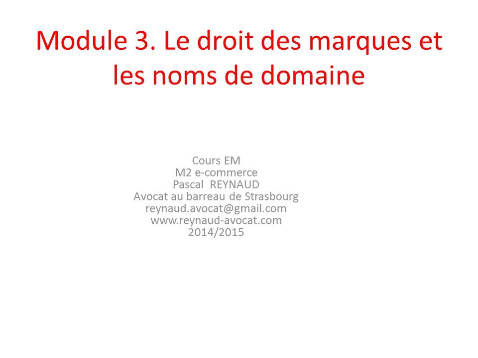 3.9 La protection de la marque sur internet Une action en contrefaçon ouverte aux titulaires de marque.