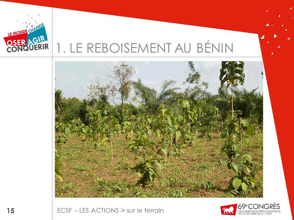 1. LE REBOISEMENT AU BÉNIN 15 ECSF – LES ACTIONS > sur le terrain