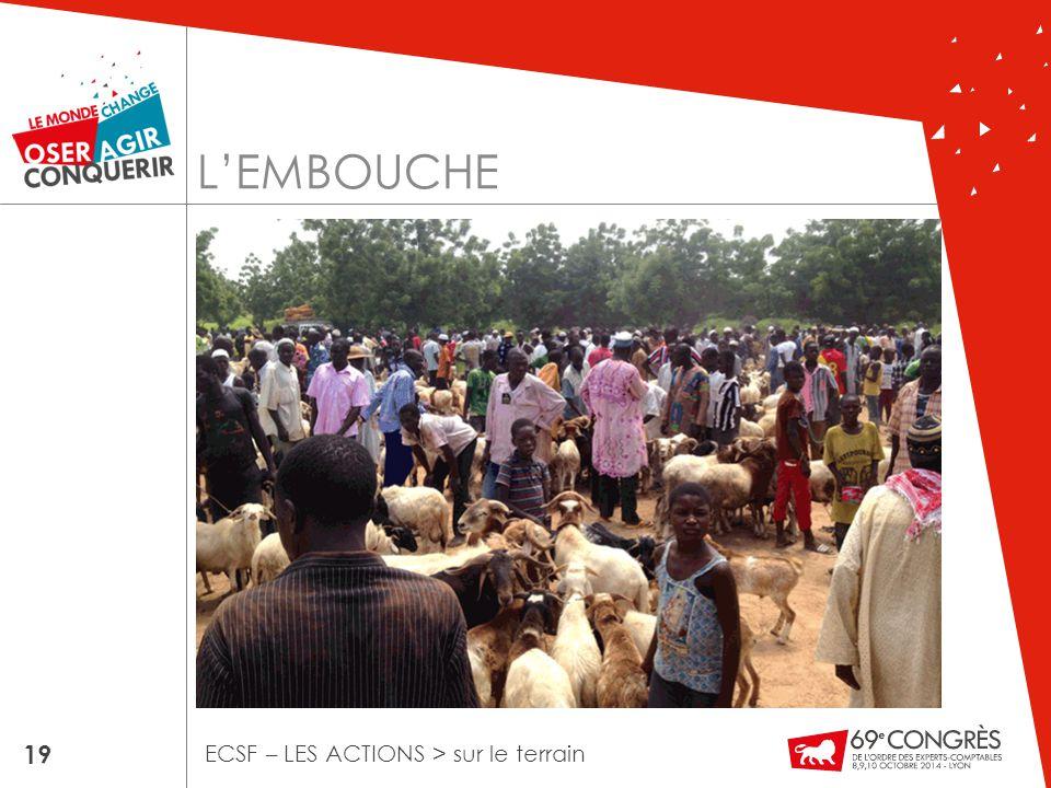L'EMBOUCHE 19 ECSF – LES ACTIONS > sur le terrain
