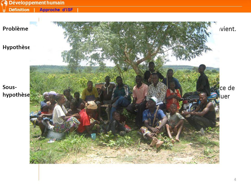 UDPA et Groupements Organisations paysannes Structure | Dynamique | Commercialisation groupée | Outils développés | Résultats | Fepassi FGPN SGDedougou Autres...