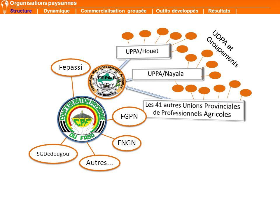 UDPA et Groupements Organisations paysannes Structure | Dynamique | Commercialisation groupée | Outils développés | Résultats | Fepassi FGPN SGDedougo