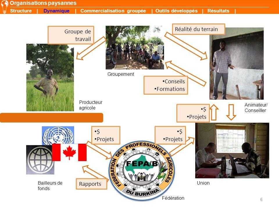 6 Groupe de travail Conseils Formations Réalité du terrain $ Projets $ Projets $ Projets Organisations paysannes Producteur agricole Groupement Animat
