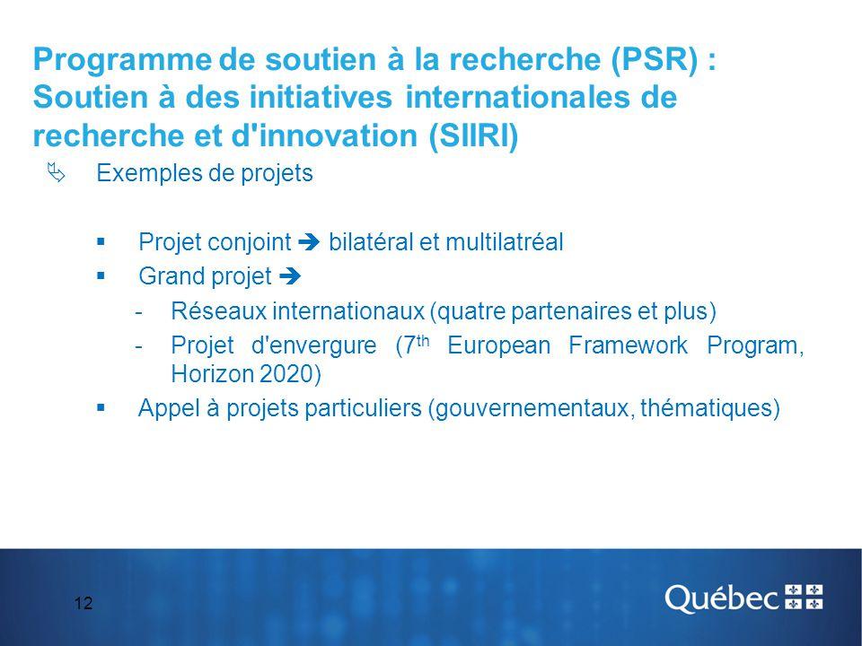 12  Exemples de projets  Projet conjoint  bilatéral et multilatréal  Grand projet  -Réseaux internationaux (quatre partenaires et plus) -Projet d