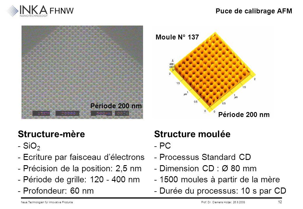 FHNW 26.9.2008Neue Technologien für innovative ProdukteProf. Dr. Clemens Holzer, 12 Puce de calibrage AFM Structure-mère - SiO 2 - Ecriture par faisce
