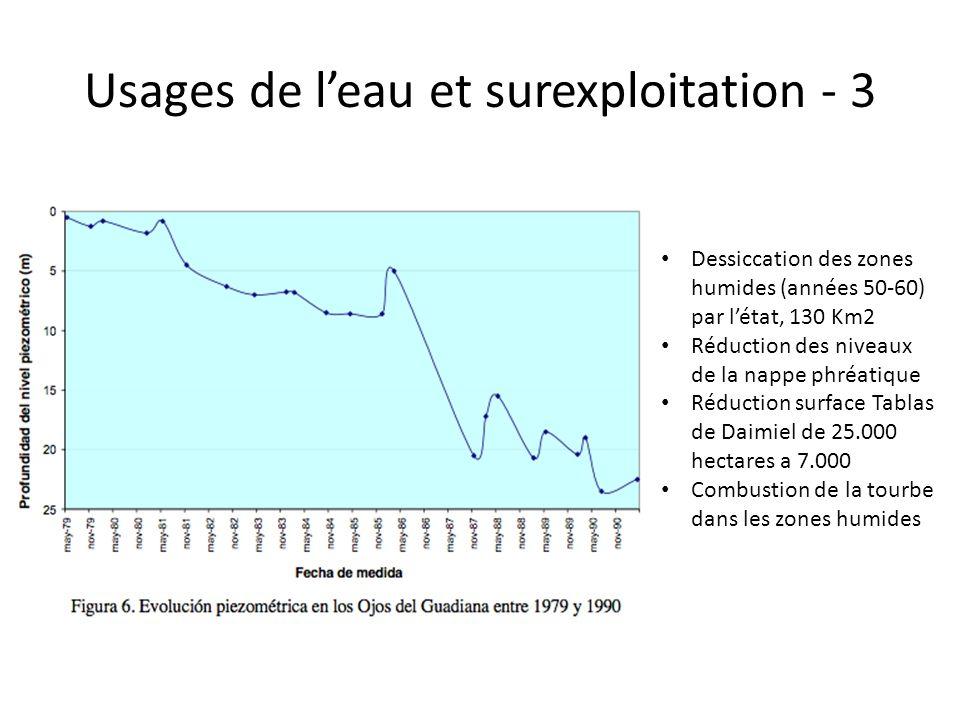 Dessiccation des zones humides (années 50-60) par l'état, 130 Km2 Réduction des niveaux de la nappe phréatique Réduction surface Tablas de Daimiel de