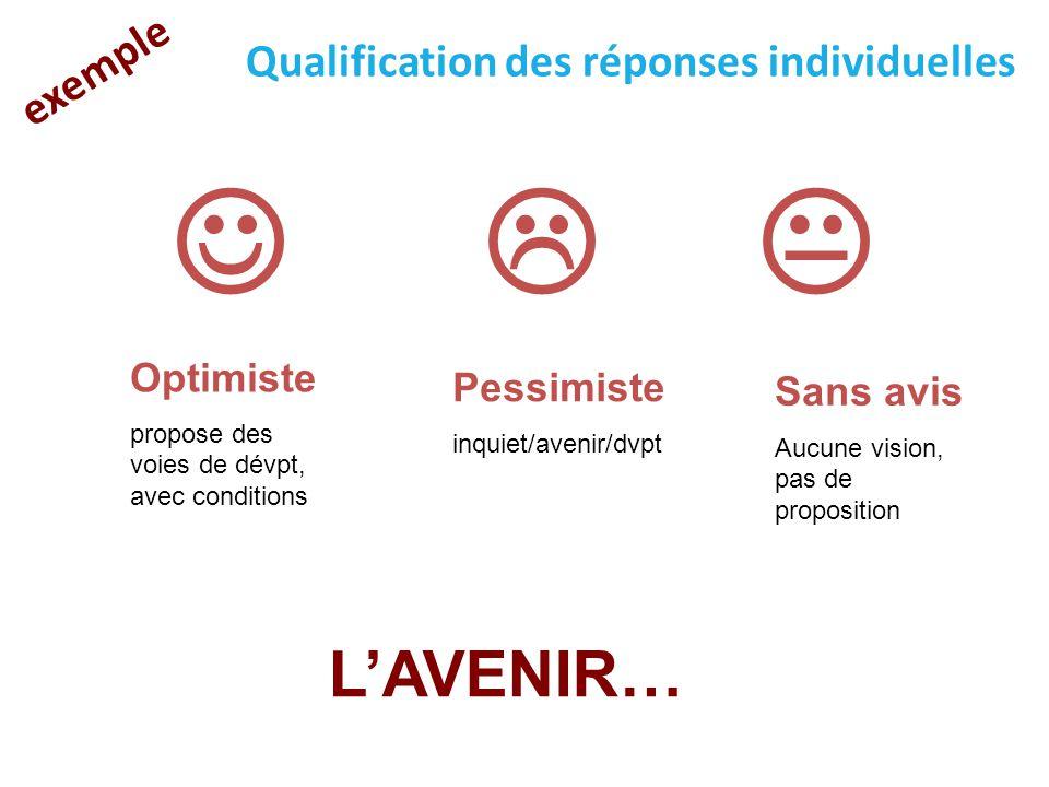 L'AVENIR… exemple Qualification des réponses individuelles   Optimiste propose des voies de dévpt, avec conditions Pessimiste inquiet/avenir/dvpt Sa