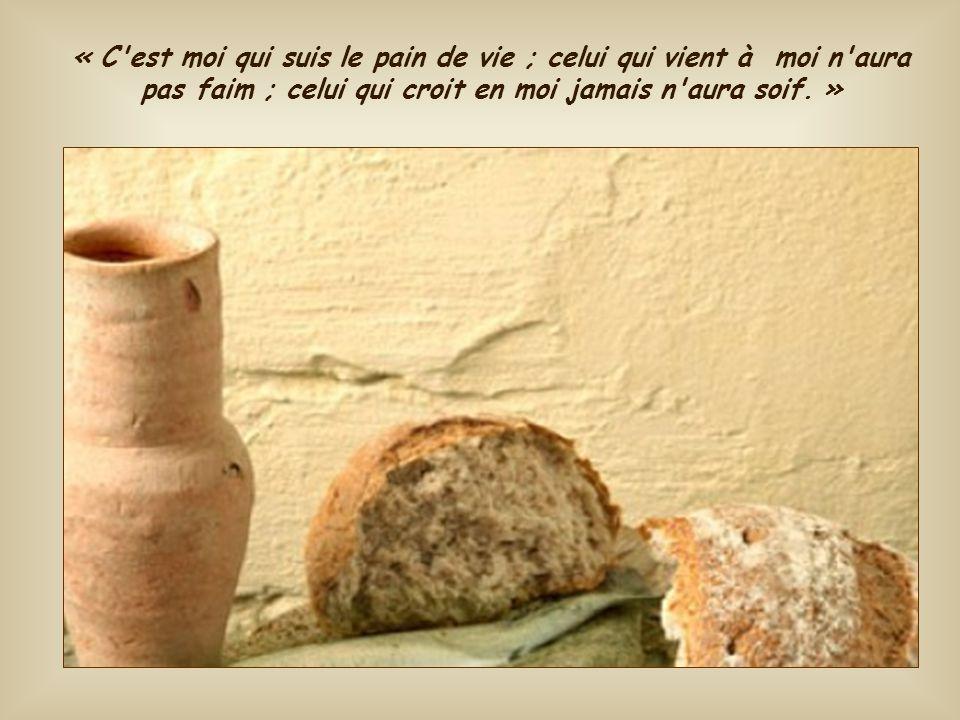 Peu après, au cours du même discours qu'il adresse à la foule qui ne comprend pas encore, Jésus se présente lui-même comme le vrai pain descendu du ci