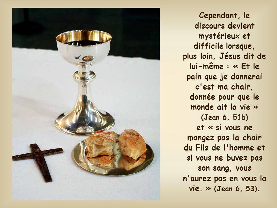 Jésus se voit déjà pain. C'est donc là le motif ultime de sa vie sur la terre. Être pain pour être mangé, pour nous communiquer sa vie, pour nous tran