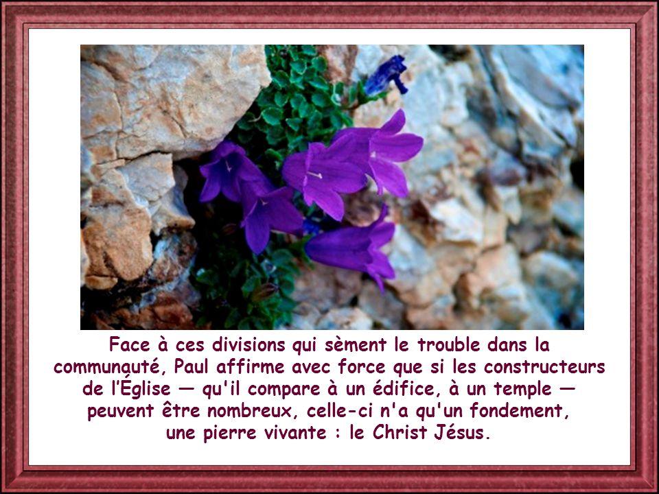 Selon l'apôtre préféré par les uns ou les autres, on entendait dire : « Moi, j'appartiens à Paul, moi à Apollos, moi à Pierre ».