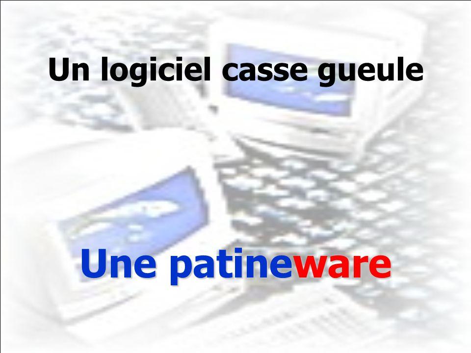 Un logiciel casse gueule Une patineware