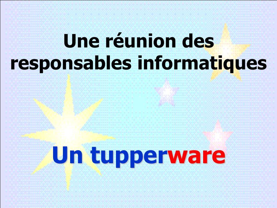 Une réunion des responsables informatiques Un tupperware