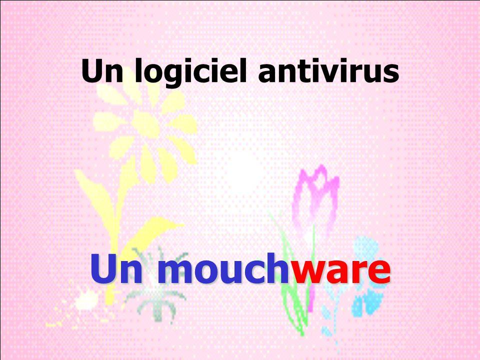 Un logiciel antivirus Un mouchware
