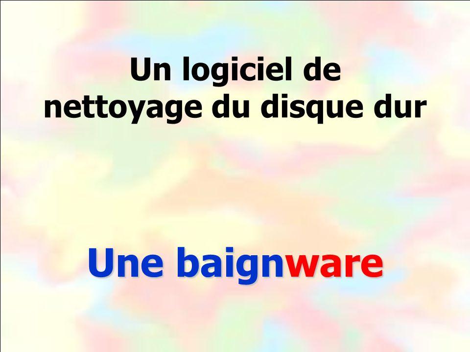 Un logiciel de nettoyage du disque dur Une baignware