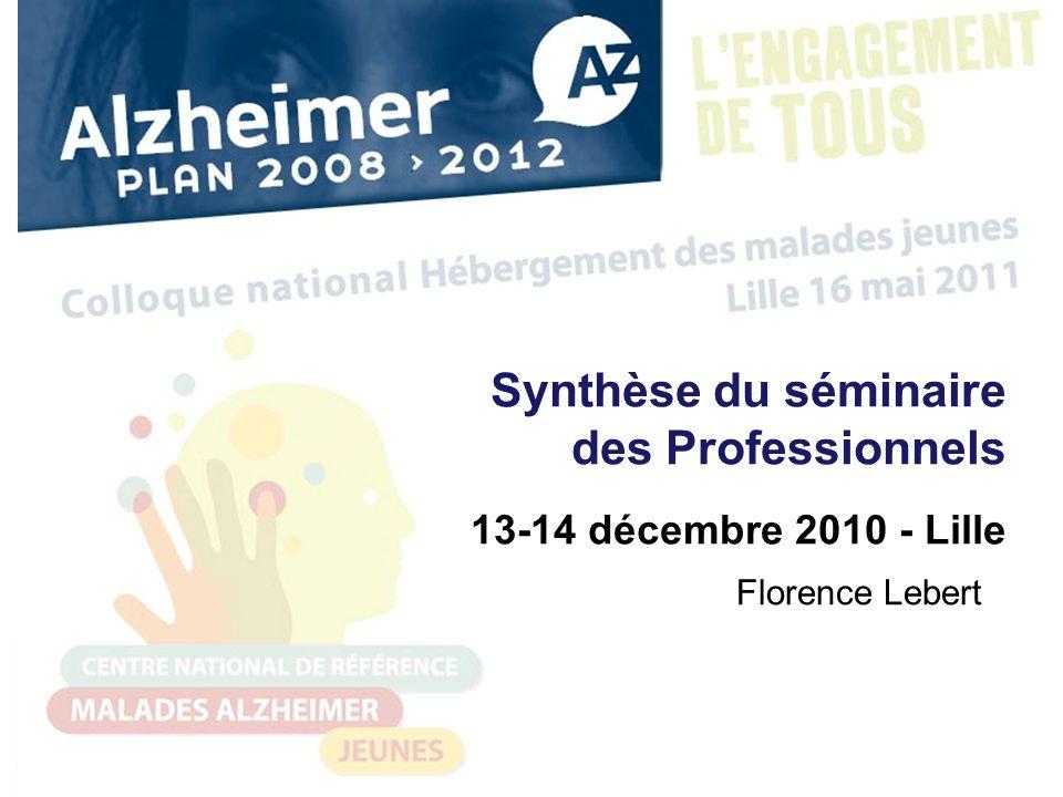 Synthèse du séminaire des Professionnels 13-14 décembre 2010 - Lille Florence Lebert