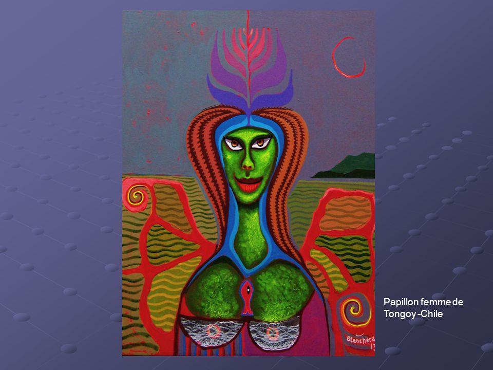 Papillon femme de Tongoy -Chile