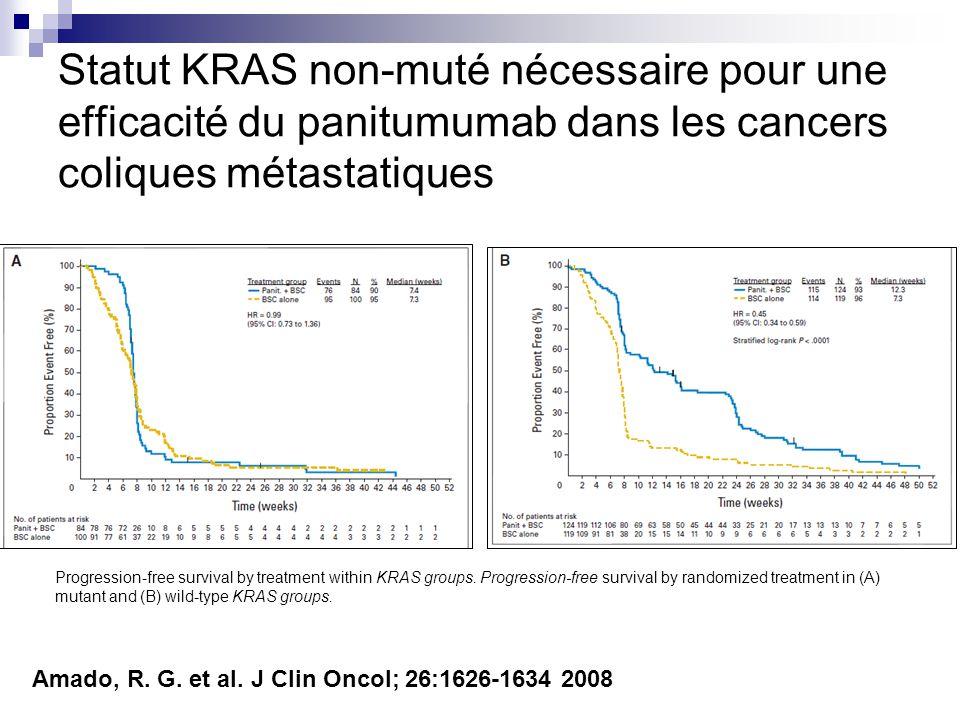 Statut KRAS non-muté nécessaire pour une efficacité du panitumumab dans les cancers coliques métastatiques Progression-free survival by treatment with