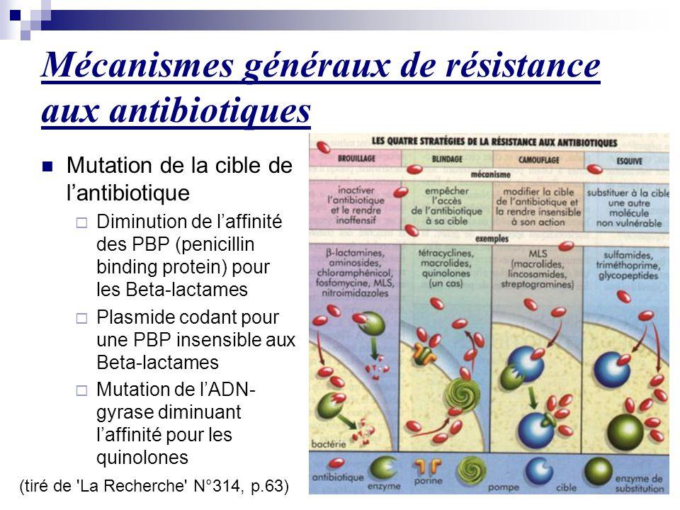 Mécanismes généraux de résistance aux antibiotiques (tiré de 'La Recherche' N°314, p.63) Mutation de la cible de l'antibiotique  Diminution de l'affi