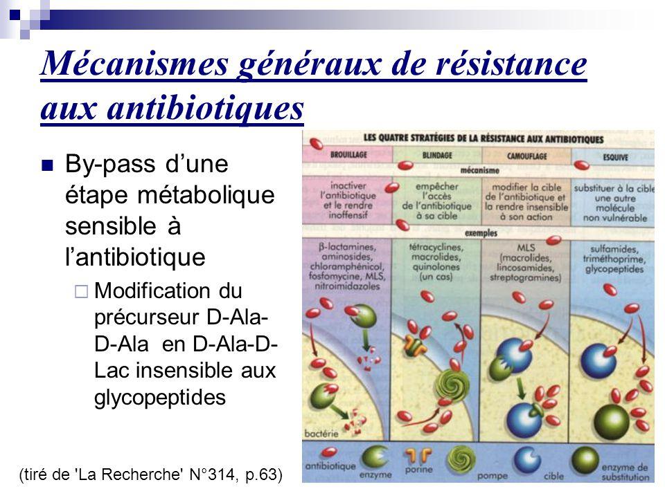 Mécanismes généraux de résistance aux antibiotiques (tiré de 'La Recherche' N°314, p.63) By-pass d'une étape métabolique sensible à l'antibiotique  M