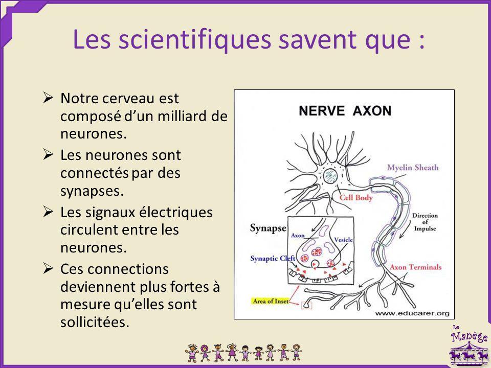 Les scientifiques savent que :  Notre cerveau est composé d'un milliard de neurones.  Les neurones sont connectés par des synapses.  Les signaux él