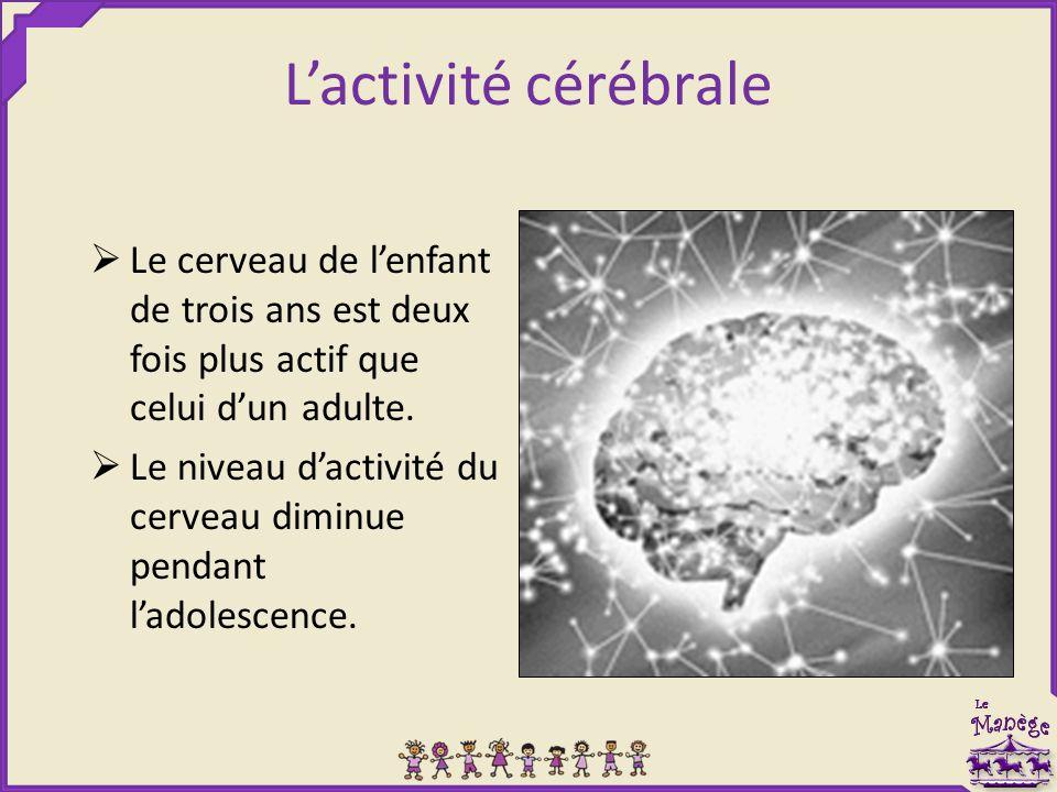 L'activité cérébrale  Le cerveau de l'enfant de trois ans est deux fois plus actif que celui d'un adulte.  Le niveau d'activité du cerveau diminue p