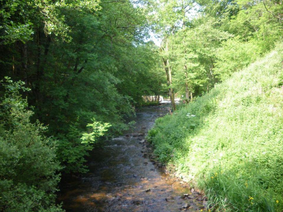 La rivière « La cure »