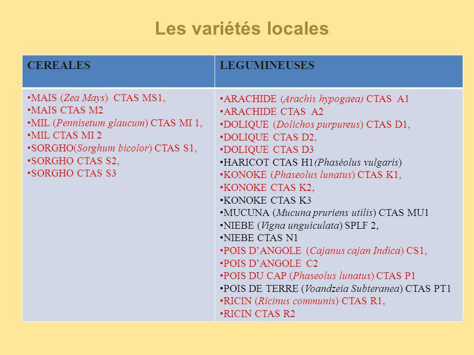 Intérêts Diversifier la production agricole (variétés introduites en vue d'une adoption par les paysans et adaptation) Listes des variétés conventionnelles CéréalesLégumineuses MAIS (Zea mays): IRAT 200, CIRAD 412, MAILAKA MILS (Pennisetum glaucum) : SOSAT C 88 SORGHO (Sorghum bicolor) : IRAT 204 HARICOT( Phaseolus vulgaris) : LINGOT BLANC ARACHIDE (Arachis hypogaea) : FLEUR 11 Les variétés conventionnelles
