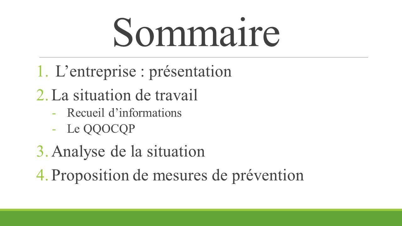 Sommaire 1. L'entreprise : présentation 2.La situation de travail -Recueil d'informations -Le QQOCQP 3.Analyse de la situation 4.Proposition de mesure