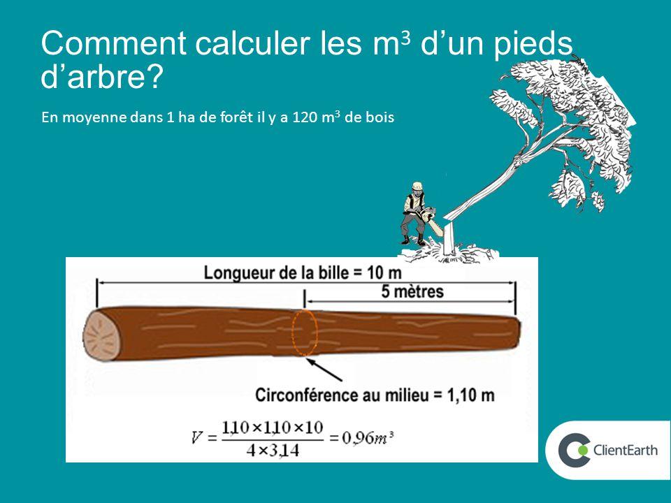 Comment calculer les m 3 d'un pieds d'arbre En moyenne dans 1 ha de forêt il y a 120 m 3 de bois