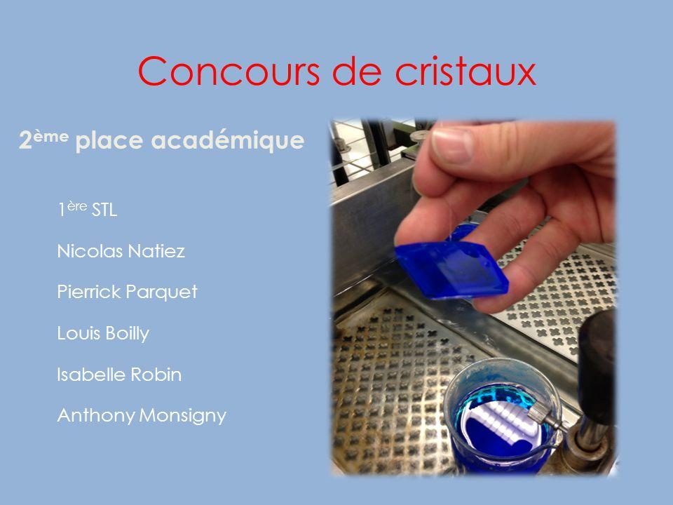 Concours de cristaux 2 ème place académique 1 ère STL Nicolas Natiez Pierrick Parquet Louis Boilly Isabelle Robin Anthony Monsigny