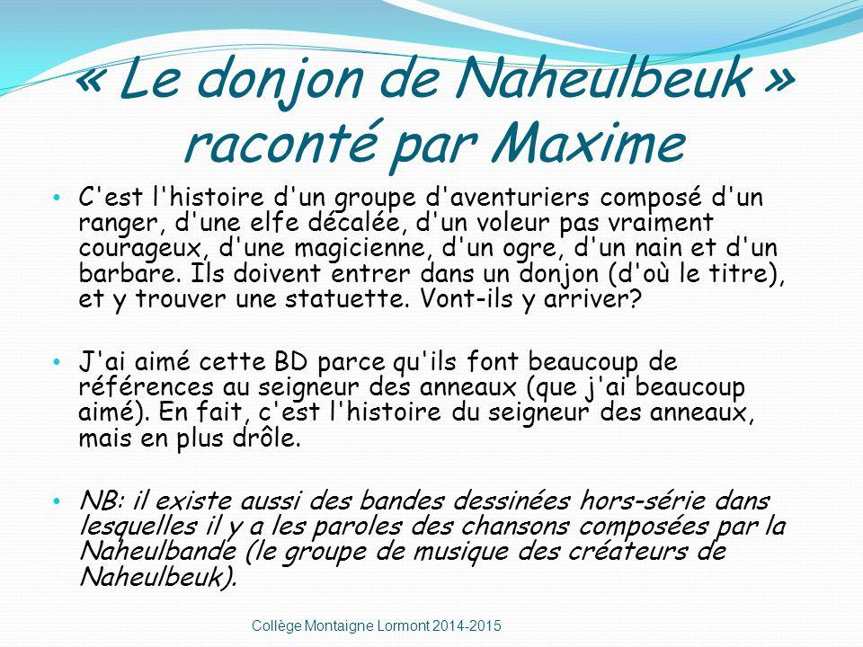 « Le donjon de Naheulbeuk » raconté par Maxime C est l histoire d un groupe d aventuriers composé d un ranger, d une elfe décalée, d un voleur pas vraiment courageux, d une magicienne, d un ogre, d un nain et d un barbare.
