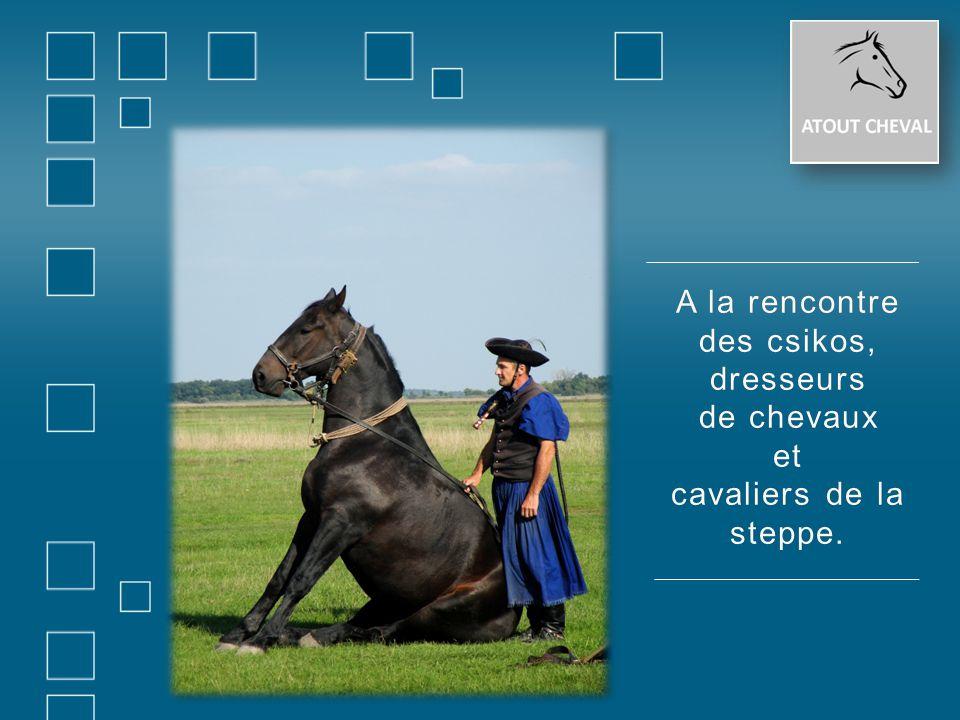 A la rencontreA la rencontre des csikos,des csikos,dresseurs de chevauxde chevauxet cavaliers de la steppe.