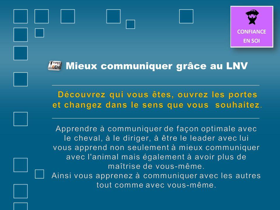 Mieux communiquer grâce au LNV