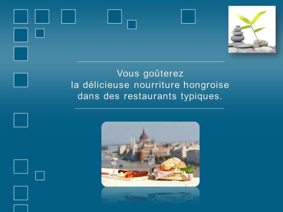 Vous goûterezVous goûterez la délicieuse nourriture hongroise dans des restaurants typiques.