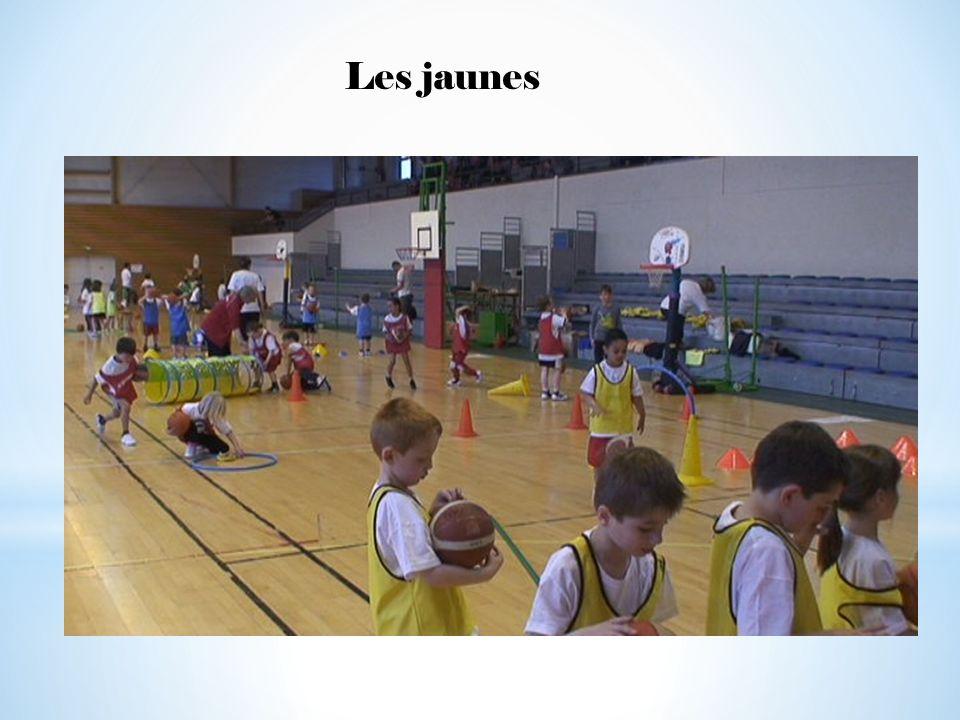 REMERCIEMENTS A la FFBB et à la Commission des Jeunes A la commission minibasket du Comité des Vosges Au Conseil Général des Vosges Au Crédit Mutuel des Vosges Au club de basket local.