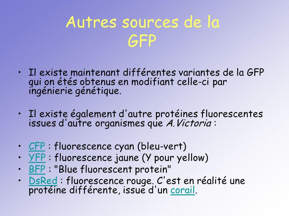 Il existe maintenant différentes variantes de la GFP qui on étés obtenus en modifiant celle-ci par ingénierie génétique. Il existe également d'autre p